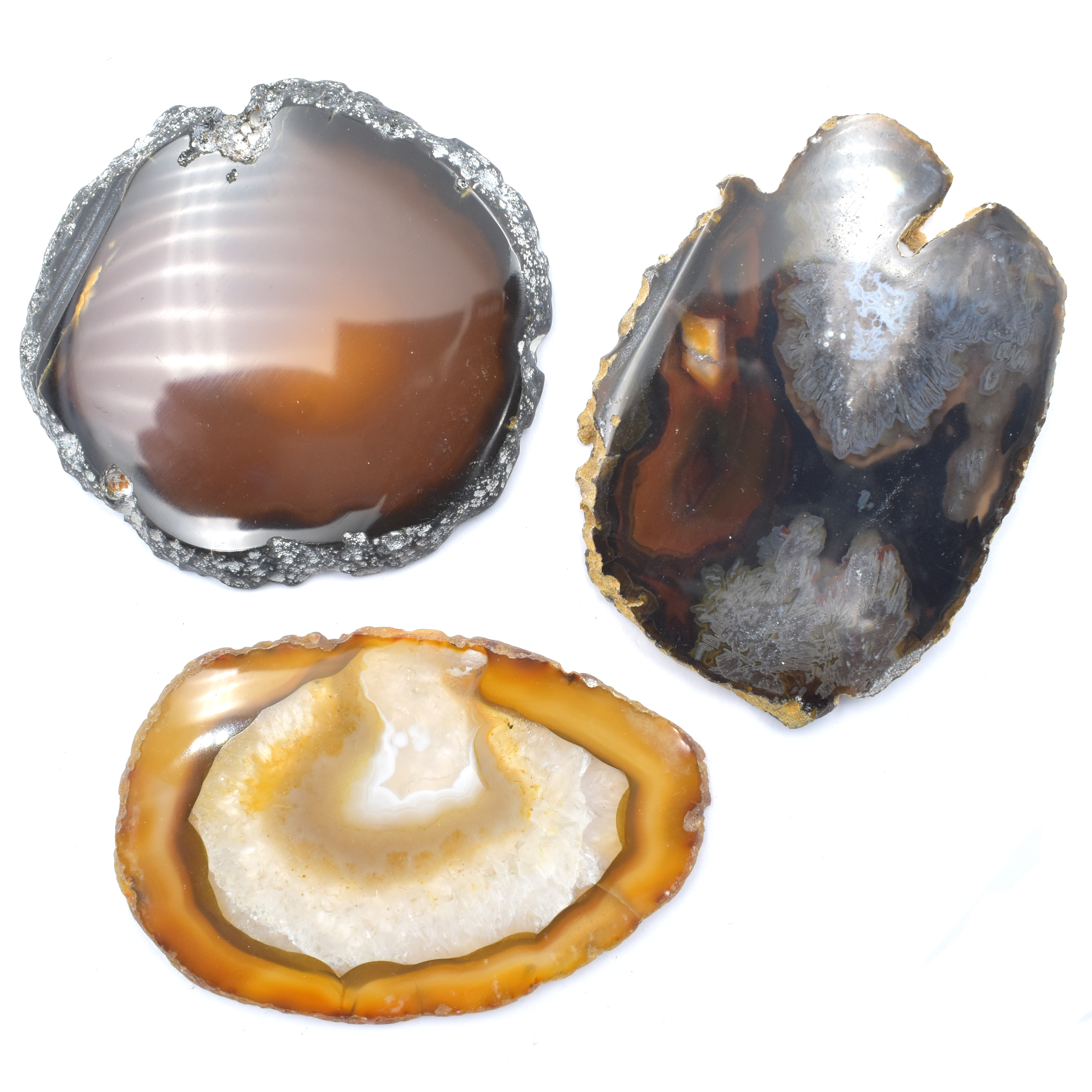 Agate Slice Natural '2' Agate Slices wholesale crystals online