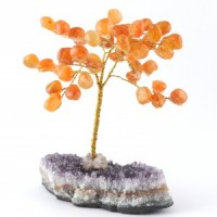 Wholesale Natural Crystals Australia Crystal Trees carnelian on amethyst