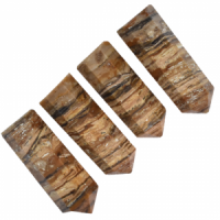 Petrified Wood Pkt4 Generators wholesale crystals and stones