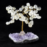 Wholesale Natural Crystals Australia Crystal Trees clear quartz on amethyst