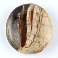 Wholesale crystals Online Crystal Carving Flatstone Petrified Wood