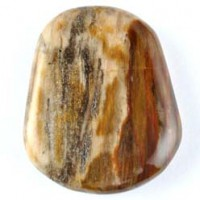 Wholesale Rocks and Stones Crystal Carving Flatstone Petrified Wood