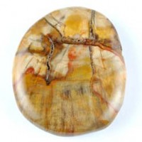 Natural Crystal Wholesale Crystal Carving Flatstone Petrified Wood