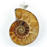 Wholesale Crystals Sydney Crystal Pendant Ammonite