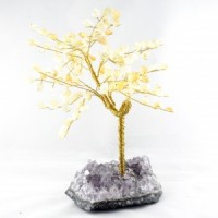 Wholesale Natural Crystals Australia Crystal Trees large citrine on amethyst