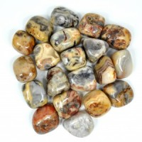 Crystals Australia Wholesale Polished Tumbled Crystal Crazy Lace Agate