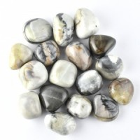 Wholesale Rocks and Crystals Jasper Picasso